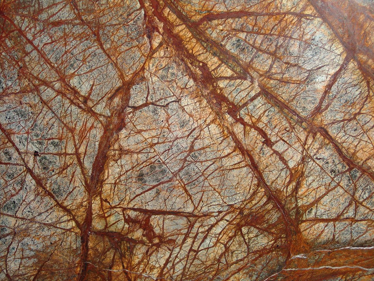 Rainforest Brown Marble : Image picture photo di marmi macchiavecchia
