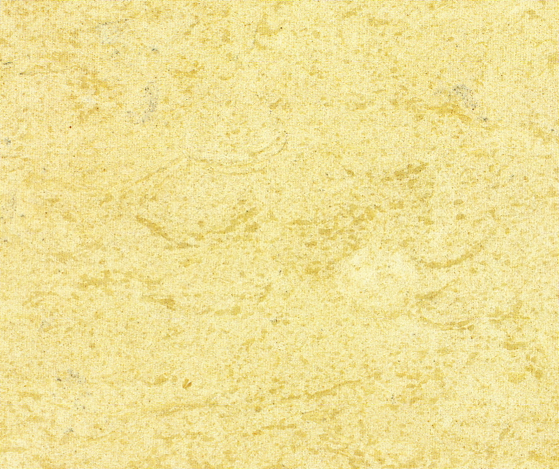 Granite marble 4 image picture photo of marble and for Granito color beige
